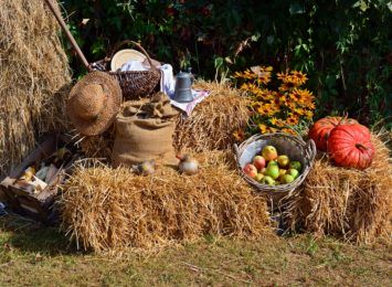 Rodzinny Festyn Dożynkowy w Marklowicach już 5 września