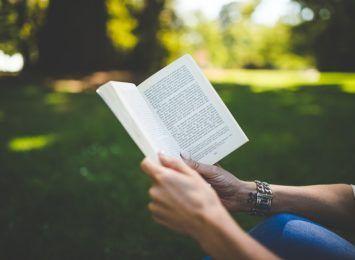 Spotkania z książeczką, Bajkowy Ogród Malucha i Wierzbowa Czytelnia. Wakacje z rybnicką biblioteką