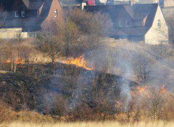 Płoną trawy. Strażacy podsumowują swoje akcje od początku roku