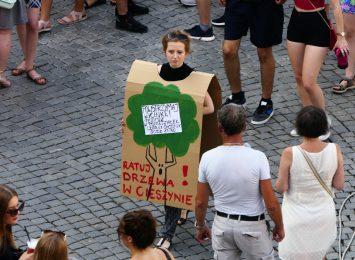 Cieszyn - NIE - dla wycinki drzew. Mieszkańcy będą protestować