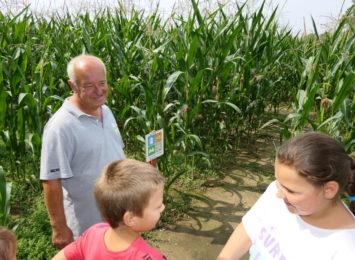 Ochaby: Zakręcony labirynt w kukurydzy! Dasz radę z niego wyjść? [WIDEO]