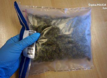 Zatrzymani z narkotykami