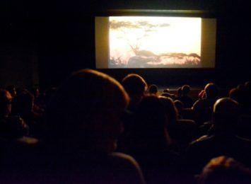 WCK: Kino Pegaz wraca z seansami