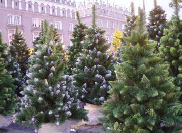 Scena, kramy, wielki garnek bigosu... Raciborski Jarmark Bożonarodzeniowy