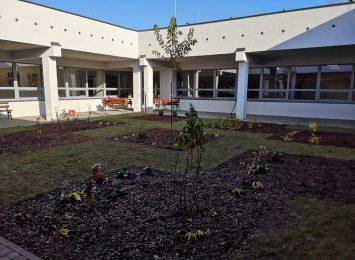 Ogród ze złomu w Jastrzębiu-Zdroju