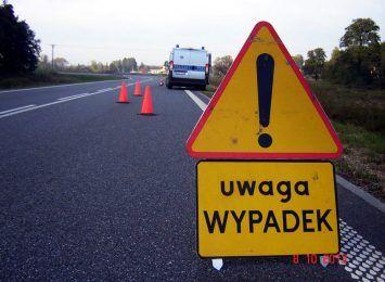 Wypadek na wiślance w Pawłowicach. Auto wjechało do rowu