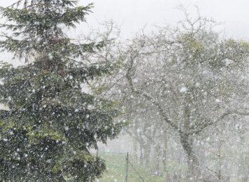 Kolejne ostrzeżenie meteorologów. Wiosny nie widać na horyzoncie