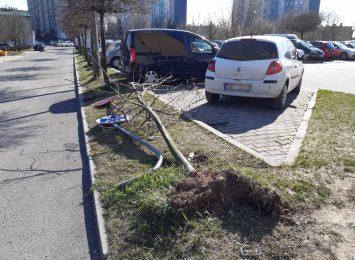 Wodzisław Śląski: Uszkodzone samochody, połamane znaki - rajd po osiedlu [AKTUALIZACJA]