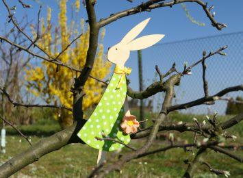 Pogoda na Wielkanoc. Co w prognozach na świąteczny weekend?