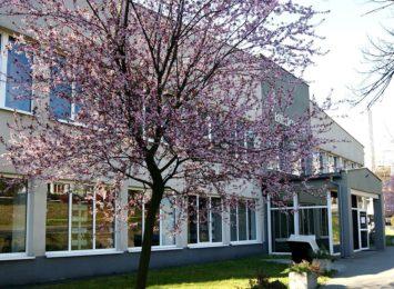 Jastrzębie: biblioteka zaprasza do udziału w projekcie ,,Kultura w chmurach''