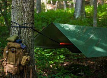 """Nocowanie w lesie także wśród skał. """"Jurajska Przygoda"""""""