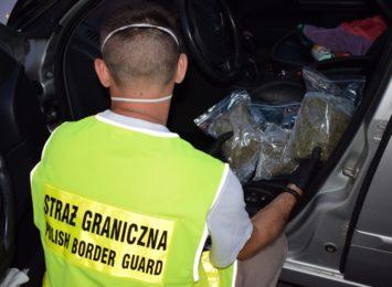 Udaremniono przemyt marihuany do Polski. To ponad pół kilograma narkotyku