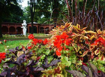 Jastrzębie-Zdrój znów zaprasza na zwiedzanie Parku Zdrojowego