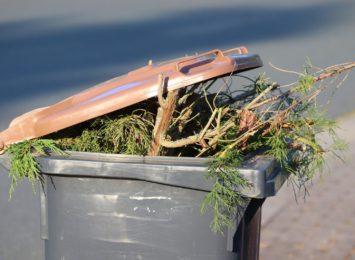Czy to jest dyskryminacja? Problem z odbiorem śmieci w Rydułtowach