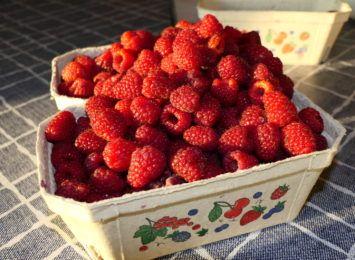 Najwięcej witaminy mają polskie owoce i warzywa