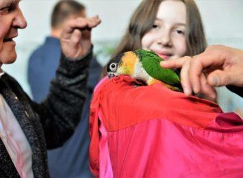 WCK: Wystawa Konkursowa Kanarków i Ptaków Egzotycznych