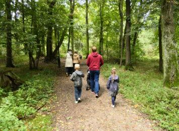 Pomysł na weekend: spacer po lesie. Odpoczniesz, zrelaksujesz się i nabierzesz odporności [WIDEO]