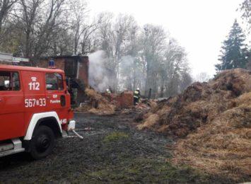 Pożar stodoły w Krowiarkach. W płomieniach zginął koń