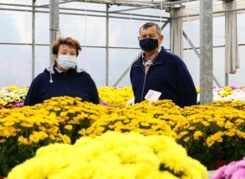 Wspomagamy ogrodników kupując kwiaty [FOTO]