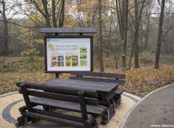 Pomysł na weekend: Skoczów zaprasza do parku na Górnym Borze [FOTO]