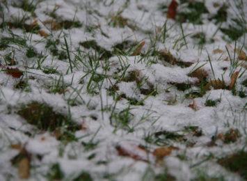 Śnieg poprawił jakość powietrza w regionie