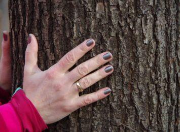 Jastrzębie-Zdrój: Weź udział w akcji wspólnego sadzenia drzew