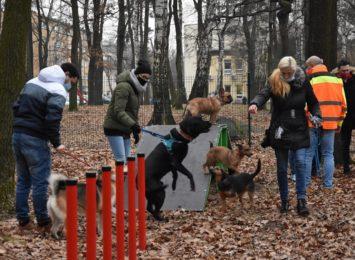 W Leszczynach otwarto wybieg dla psów [FOTO]
