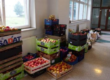 2,5 tony jabłek od kibiców żużla dla rybnickiej lecznicy