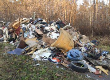 Mieszkańcy zapłacili za utylizację a śmieci… wylądowały w lesie [WIDEO]
