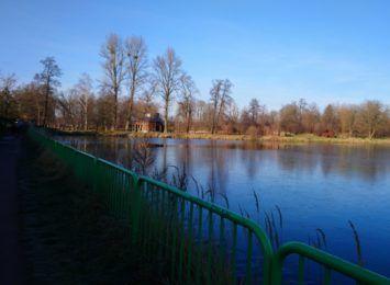 Budżet obywatelski w Rybniku. Gdzie i jak konsultować ekologiczne projekty?
