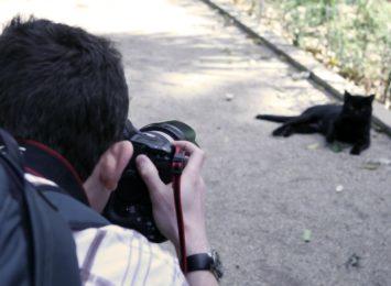 Kochasz zwierzęta? Weź udział w konkursie fotograficznym z DK w Rybniku-Niewiadomiu