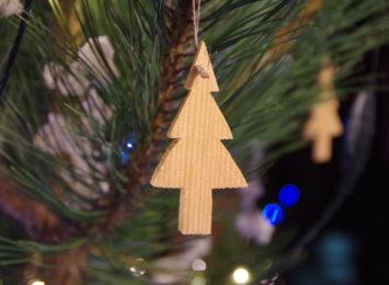 Leśnicy radzą co zrobić z choinką po świętach