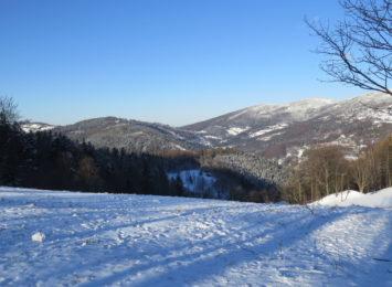 Jak mija Wam drugi tydzień ferii zimowych? [SONDA]