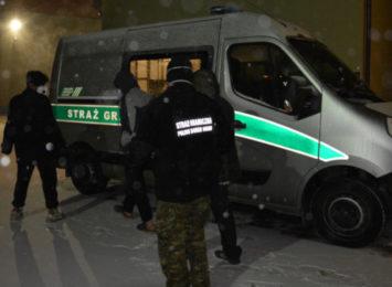 Przyjechali nielegalnie do Polski ukryci w samochodach ciężarowych