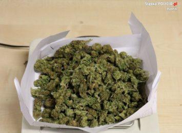 Prokuratorskie zarzuty za posiadanie narkotyków