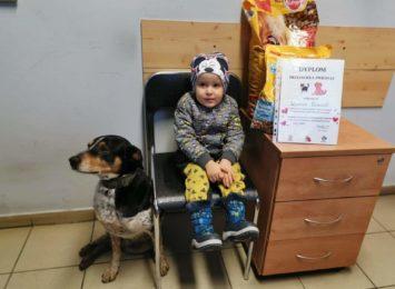 Czerwionka-Leszczyny przedłuża akcję ''Walentynkowe serce dla zwierzaków''. Jak można pomóc?