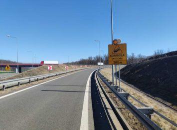 Kontrola drogowa przy granicy z Czechami i Słowacją