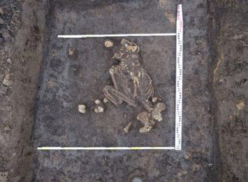 Pod Raciborzem rolnik odkrył groby sprzed 4 tysięcy lat! Co dalej z wykopaliskiem?
