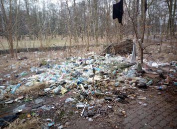 ''Śmieci jest pełno''. Mieszkańcy Szczygłowic sami chcą posprzątać zaniedbany park [FOTO]