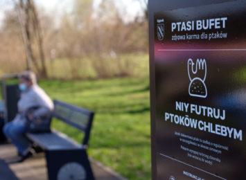 Ptasie bufety stanęły w Rybniku. Koniec z dokarmianiem ptaków i kaczek chlebem [WIDEO]