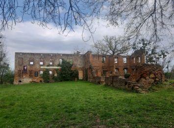 Pomysł na weekend: Zobaczcie ruiny pałacu w Łubowicach