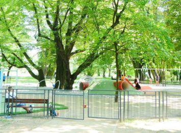 Wodzisław Śląski: W parku poprawi się bezpieczeństwo