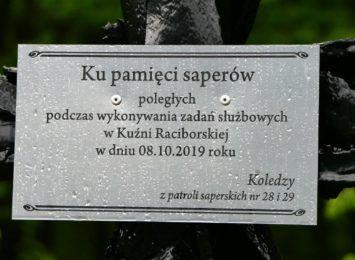 Kilkaset drzew zasadzono w lasach Kuźni Raciborskiej. Jedno z nich jest szczególne [FOTO]