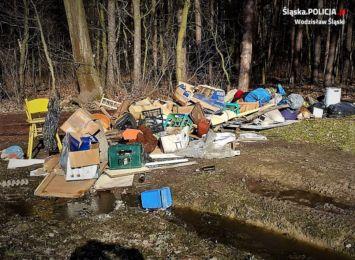 Zamiast na wysypisko, firma wywiozła śmieci do lasu. Udało się ją namierzyć
