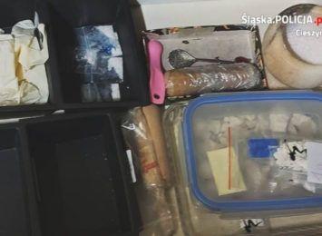 Brenna: Areszt za posiadanie dużej ilości narkotyków