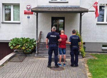 Policjanci ze Strumienia zatrzymali seryjnego złodzieja