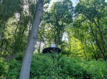 Pomysł na czerwcowy weekend: Wracamy do Arboretum Bramy Morawskiej