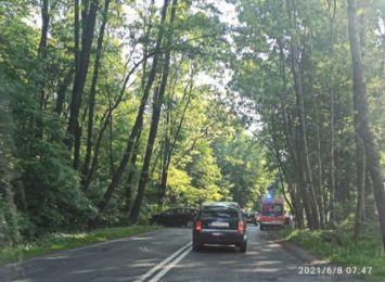 Wypadek na ulicy Mikołowskiej w Rybniku. Samochód osobowy uderzył w drzewo