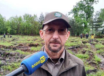 Dużo turystów w rezerwacie Łężczok. Leśnicy chwalą to jak się zachowują