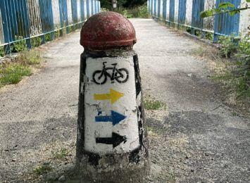 Żory najlepsze w rowerowej rywalizacji na Śląsku. A reszta miast z regionu?